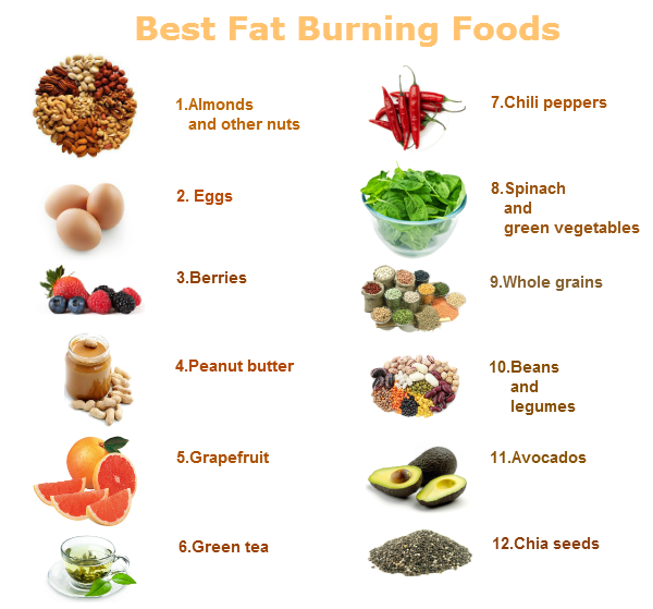 The Top Fat-Burning Foods - Health